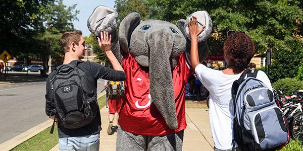 students high-five Big Al